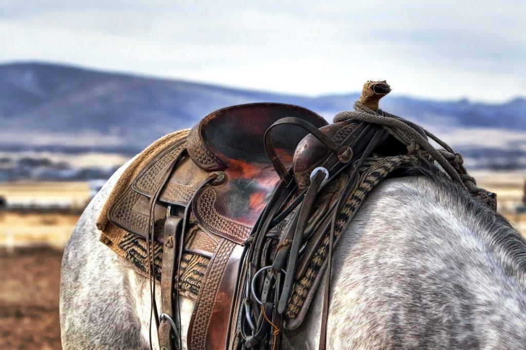 Paint Horse Saddle